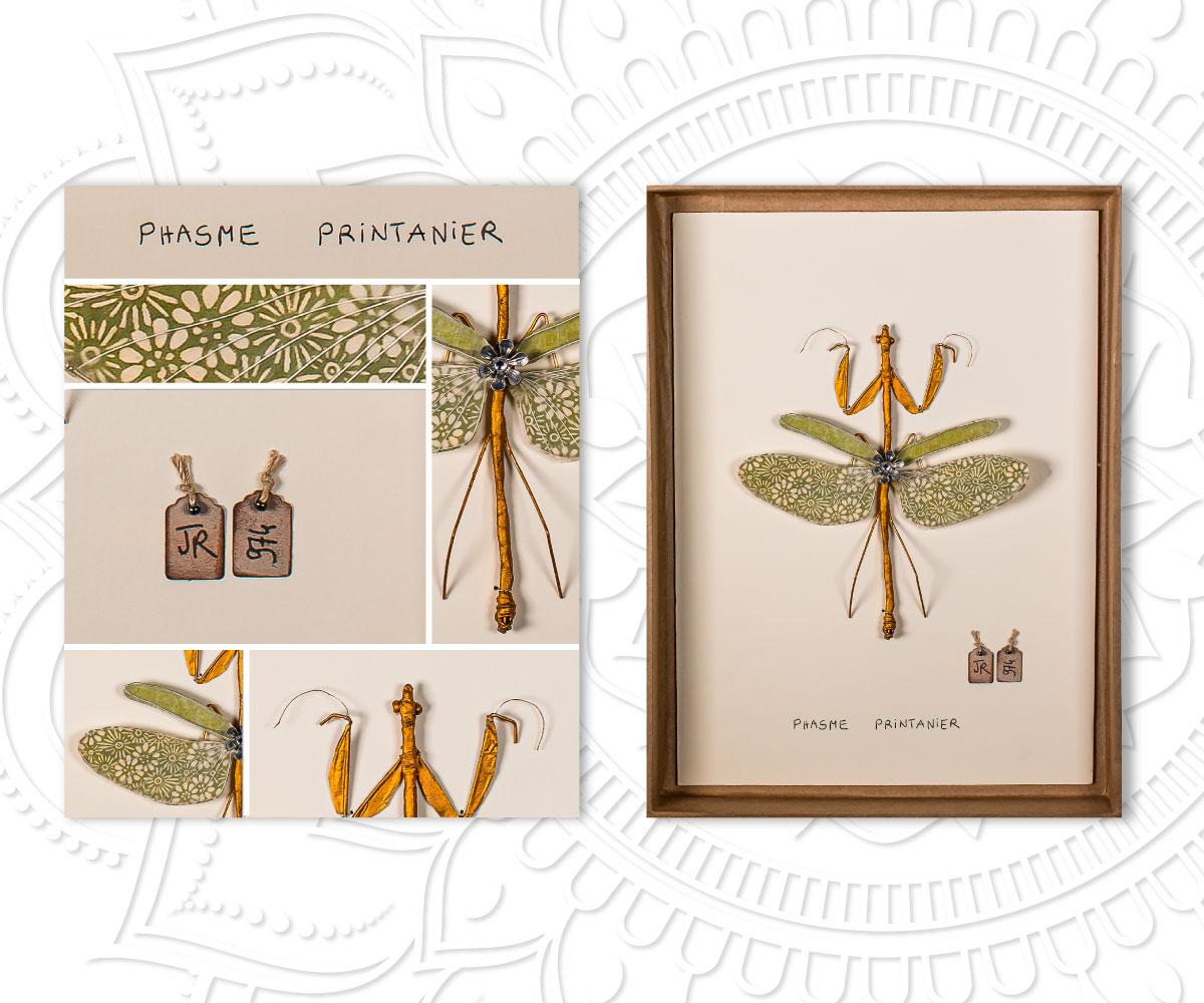 Phasme Printanier- Best Sellers