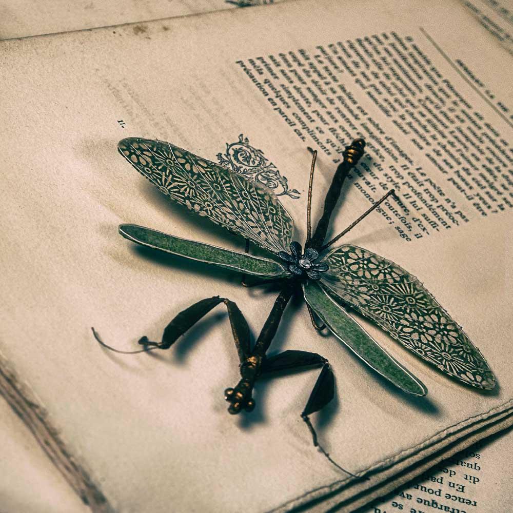 L'univers de Mérope: les livres anciens