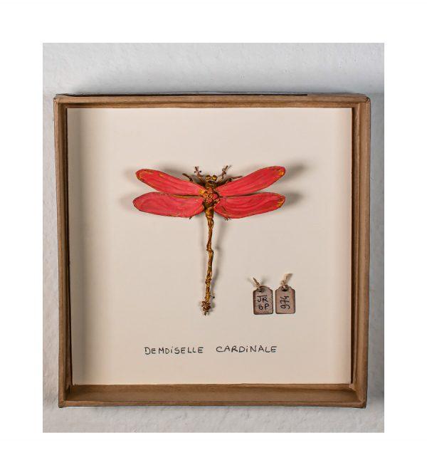 Demoiselle cardinale