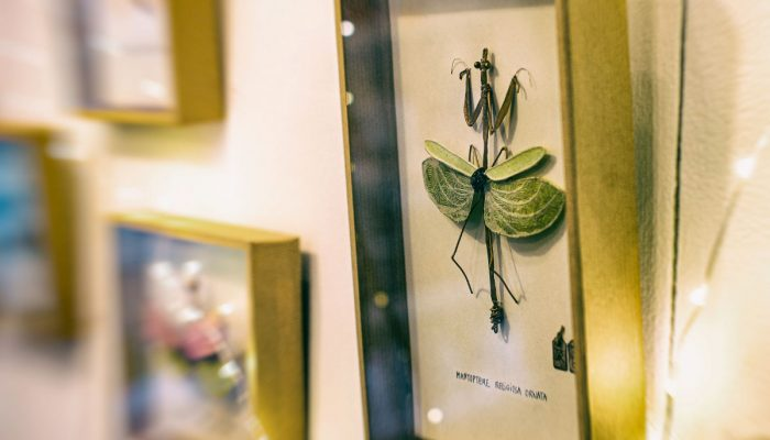 creations-cadres-merope-l-etang-décoration